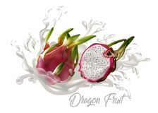 Dragon fruit juice on white background. Dragon fruit vector illustration for ads publication or food and drink menu Royalty Free Stock Photos