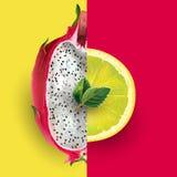 Dragon fruit and lemon. Vector illustration. Dragon fruit and lemon on a red and yellow background Royalty Free Stock Photo