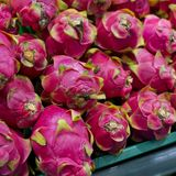 Dragon fruit on market stand Stock Image