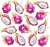 Dragon fruit pattern Vector. Delicious exotic tropical fruits detailed illustrations. Dragon fruit pattern Vector. Delicious exotic tropical fruits detailed Royalty Free Stock Photos