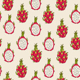 Dragon fruit pattern. Vector Illustration. Exotic fruit. Hand-drawn style Stock Image