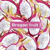 Dragon fruit pattern Vector realistic. Summer tropic pitaya healthy fruits backgrounds. Dragon fruit pattern Vector realistic. Summer tropic pitaya healthy Stock Photos
