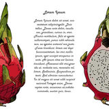 Dragon fruit or pitahaya. With text Stock Photo