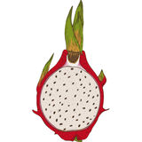 Dragon Fruit or Pitaya in Cross Section. With Seeds Isolated on a White Background Royalty Free Stock Images
