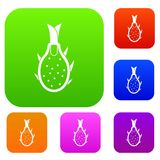 Dragon fruit set collection. Dragon fruit set icon in different colors isolated vector illustration. Premium collection Stock Photo