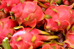 Dragon fruit. Stack of raw dragon fruit with red skin and featured texture, shown as raw, fresh and healthy fruit, or agriculture concept Royalty Free Stock Images