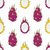 Dragon fruit. Vector seamless pattern for design Royalty Free Stock Image