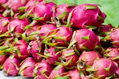 Dragon Fruit was sale in Thailand Royalty Free Stock Photos