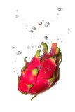 Dragon fruit in water with air bubbles. Dragon fruit falling into water, with air bubbles, in front of white background, union of the three things essential to stock image