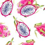Dragon fruit hand draw seamless watercolor fabric pattern. Dragon fruit watercolor hand draw illustration. Seamless pattern. Background texture stock image