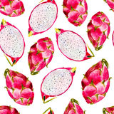 Dragon fruit watercolor seamless pattern. Bright tropical fruit  on white background. Dragon fruit watercolor seamless pattern. Bright tropical fruit  on white Royalty Free Stock Photography
