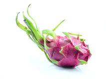 Dragon Fruit. On white background isolate Stock Photography
