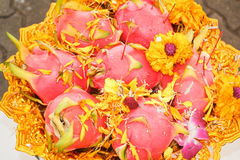 Dragon fruit for worshiping. Royalty Free Stock Photography