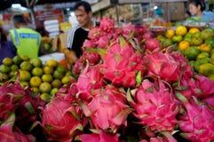 Dragon Fruits Royaltyfri Fotografi