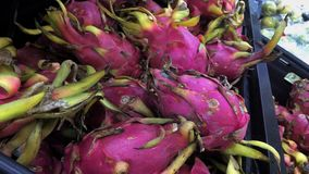 Dragon Fruits Arkivfoto
