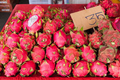 Dragon Fruits Foto de Stock Royalty Free