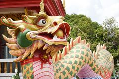 Dragon. Gold dragon at Chinese temple stock photography