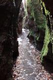 The Dragon Gorge near Eisenach Royalty Free Stock Photo