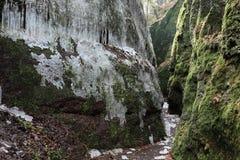 Dragon Gorge perto de Eisenach imagens de stock royalty free