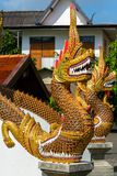 Dragon guard statue at the buddhist temple entrance Royalty Free Stock Photography