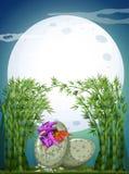 Dragon hatching egg on fullmoon night Royalty Free Stock Image