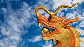 Dragon head Royalty Free Stock Photos
