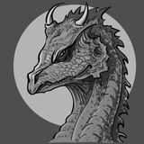 Dragon head. Black and white painted dragon. Royalty Free Stock Photos