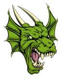 Dragon head illustration Stock Images