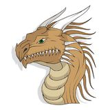 Dragon head. Isolated on a white background Royalty Free Stock Photography