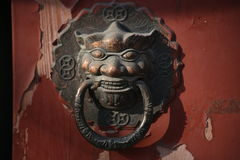Dragon head knoker Stock Images