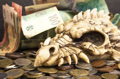 Dragon head and money Stock Images