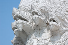 Dragon heads on the blue sky Stock Images