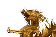 Dragon image Stock Photo