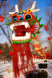 Dragon Kite. A dragon Kite 100 meters long Stock Images