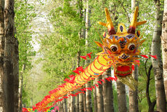 Dragon kite Stock Photos