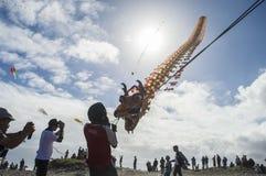 Dragon Kite royaltyfri fotografi