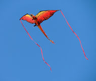 Dragon kite with streamers Royalty Free Stock Photos