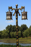 Dragon Lamp Yuanming Yuan Old Summer Palace Stock Photos