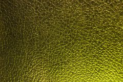 Dragon leather background, green royalty free stock photos