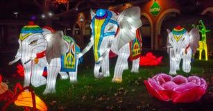 Dragon Lights, festival de lanterna chin?s Albuquerque, nan?metro fotografia de stock