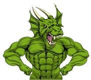 Dragon Mascot duro Imagen de archivo