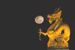Dragon and moon. Golden dragon in the full moon night this area is locate in Phuket town stock images