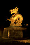 Dragon at night. Stock Image