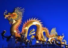 dragon and night Royalty Free Stock Photos