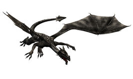 Dragon No. 7. Black dragon, that flies and grasped a goal seemingly Stock Image