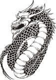 Dragon oriental puissant Images libres de droits