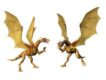 Dragon Pair Stock Images