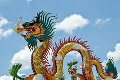 Dragon royalty free stock photo