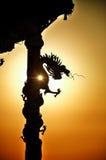 Dragon roll column statue silhouette Stock Photos