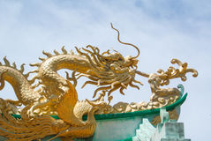 Dragon on roof. Chinese dragon on temple roof royalty free stock images